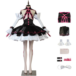 Lancer Costume Fate/EXTELLA LINK Cosplay Elizabeth Bathory