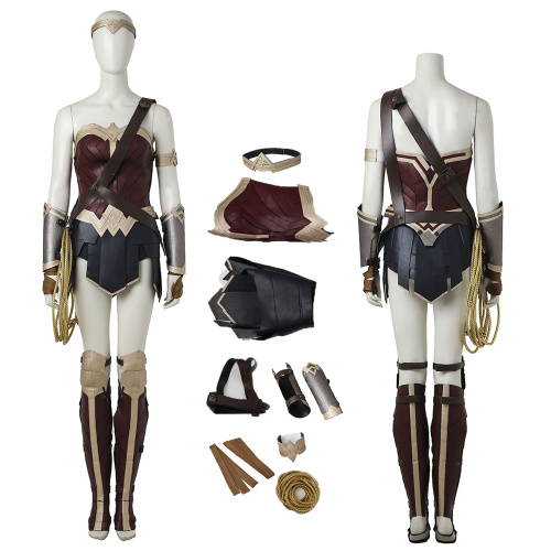 Wonder Woman Costume Dawn Of Justice Cosplay Diana Prince Full Set Deluxe Version